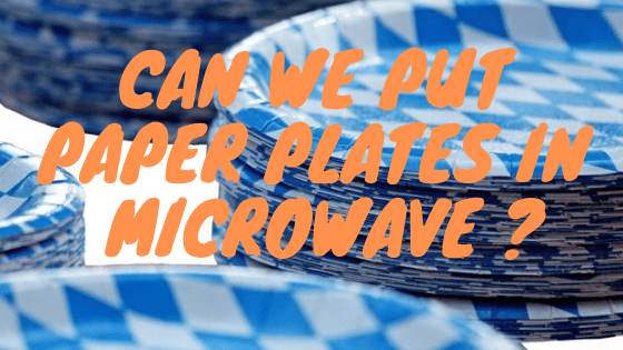 Can-we-put-paper-plates-in-microwave
